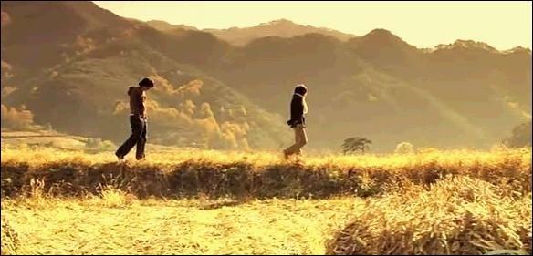 【杨柳】致远方的你(组诗)