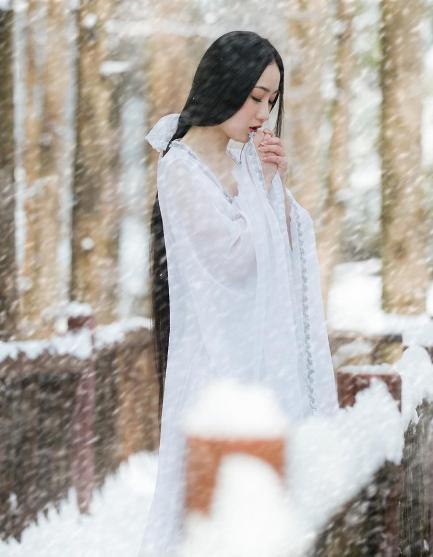 【菊韵】 我在等雪……(诗歌)